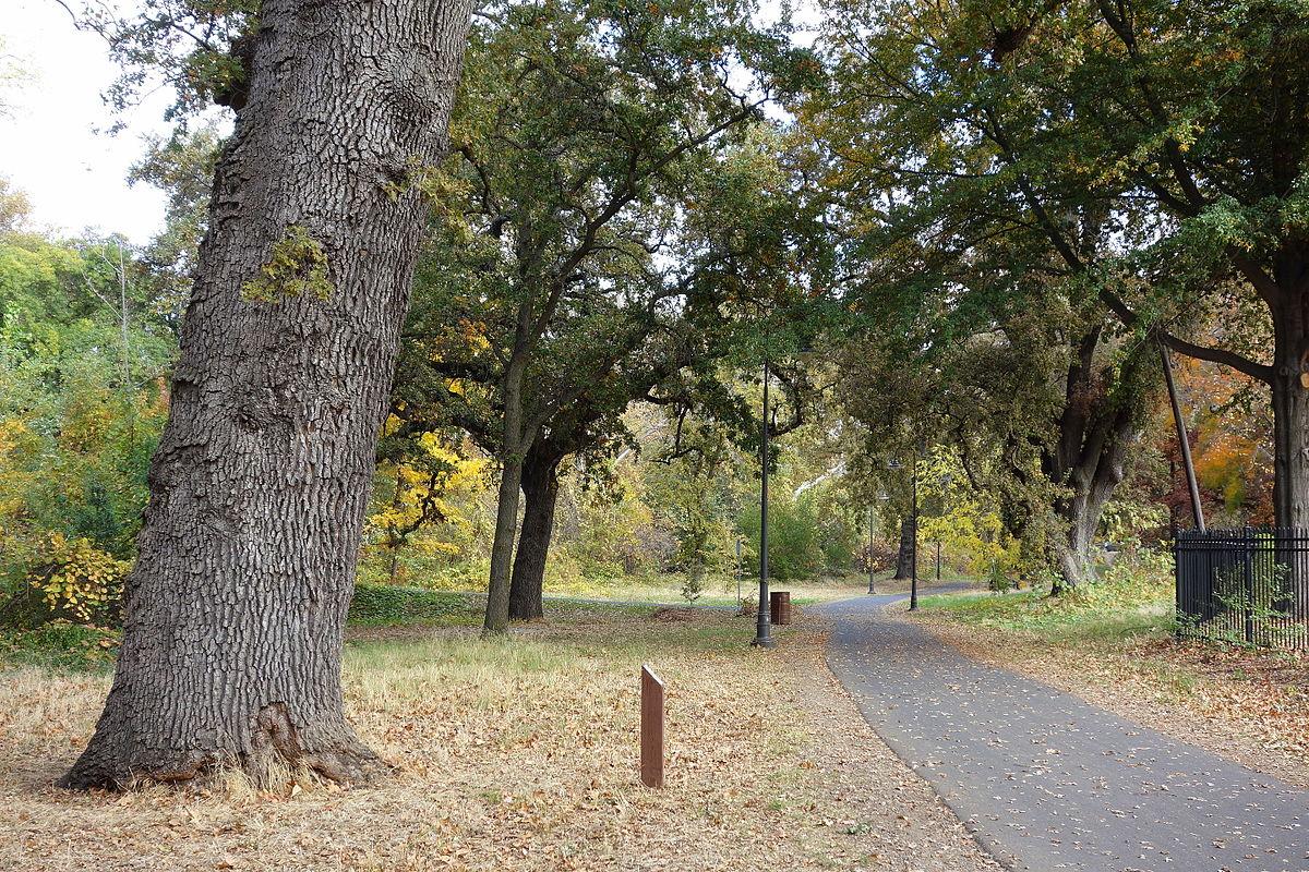 Bidwell Park in Chico, CA