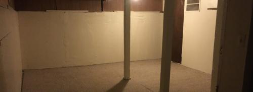 Basement has two supportive posts in the middle of the room with white walls and light carpet.