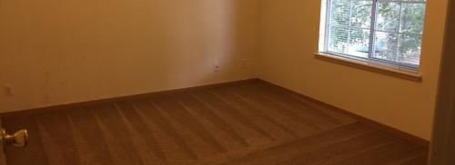 view of an empty bedroom with clean carpet floors.